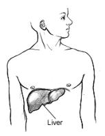 Bad Medicine Liver